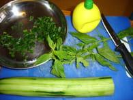 Soupe fraîche de concombre : Etape 1