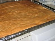 Biscuit roulé : Etape 5
