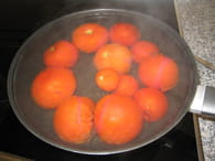 Verrines de tomates fraîches, basilic et coriandre : Etape 1
