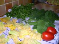 Fleurs de courgettes farcies végétariennes : Etape 1