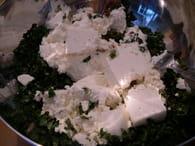 Fleurs de courgettes farcies végétariennes : Etape 4