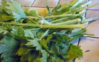 Ragoût d'agneau aux carottes : Etape 2
