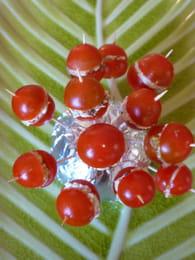 Sucettes tomate fraicheur : Etape 4