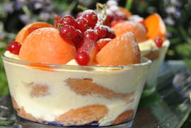 Tiramisu aux fruits d �t�