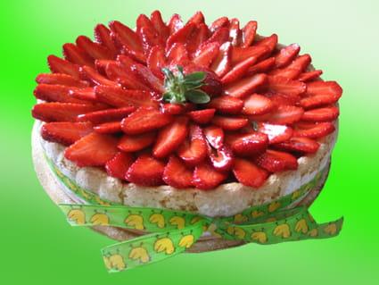 Charlotte printanière mangue/fraise