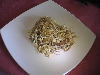 Poêlée de pousses de soja (haricots mungo)