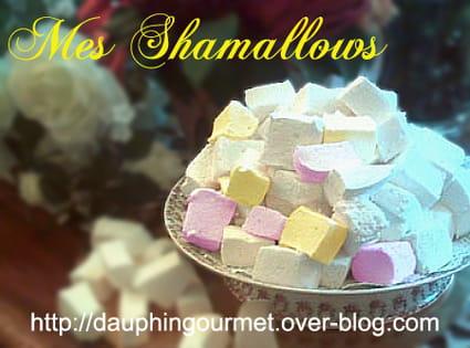 Shamallows (pâte de guimauve)