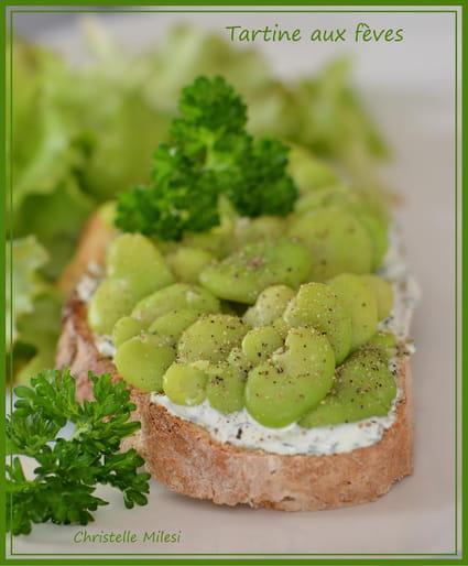 Recette de tartine aux f ves la recette facile - Cuisiner feves fraiches ...