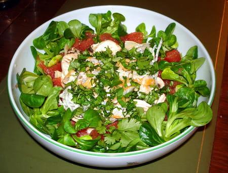 Petite salade d 39 hiver la recette facile - Salade d hiver variete ...