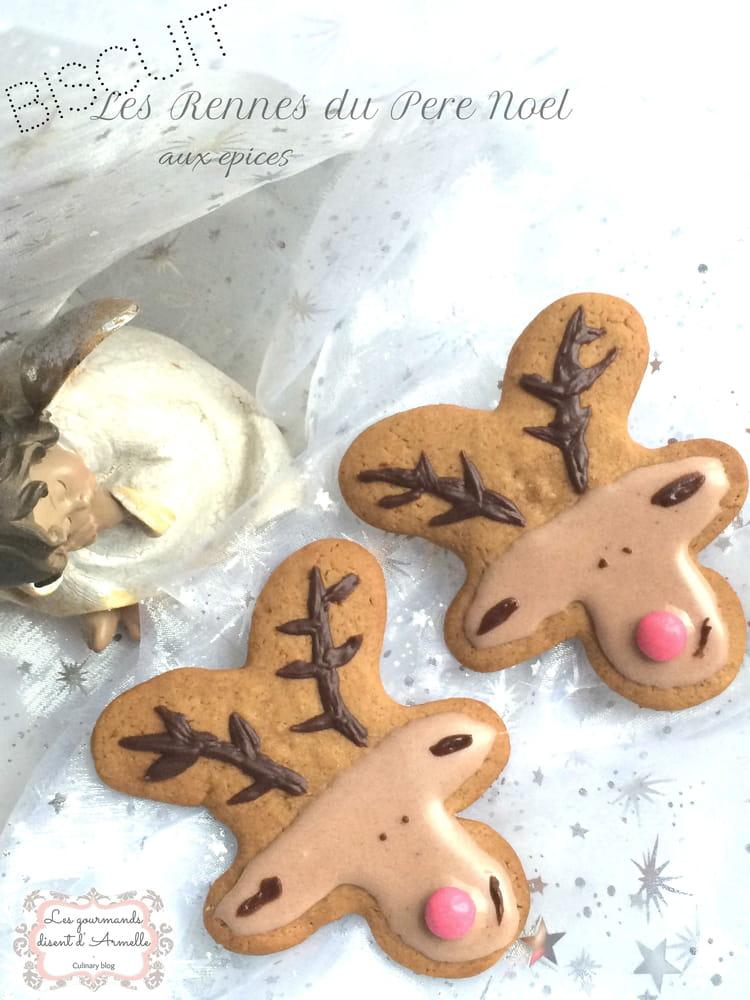 recette de biscuit les rennes du p re no l aux pices la recette. Black Bedroom Furniture Sets. Home Design Ideas