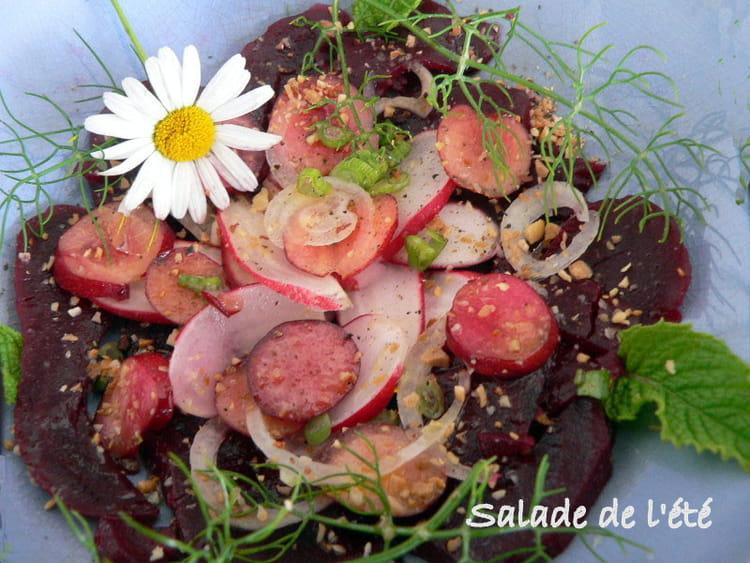 Salade d 39 t aux betteraves cerises et radis la recette facile - Salade originale ete ...