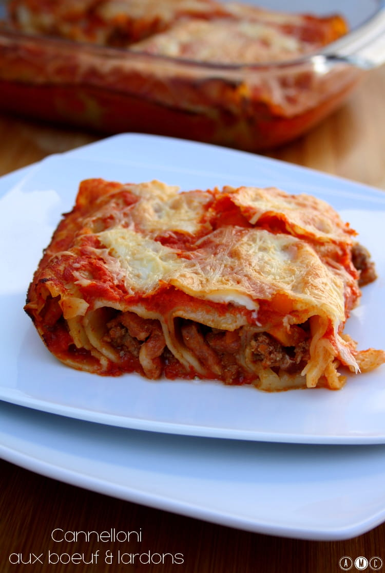 recette de cannelloni fa 231 on bolognaise la recette facile