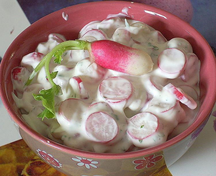 Recette de salade de radis roses aux herbes fra ches la - Cuisiner les radis roses ...