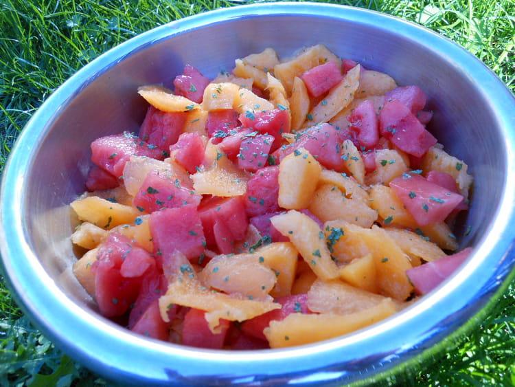 Recette de salade de melon et past que la recette facile - Salade de pasteque ...