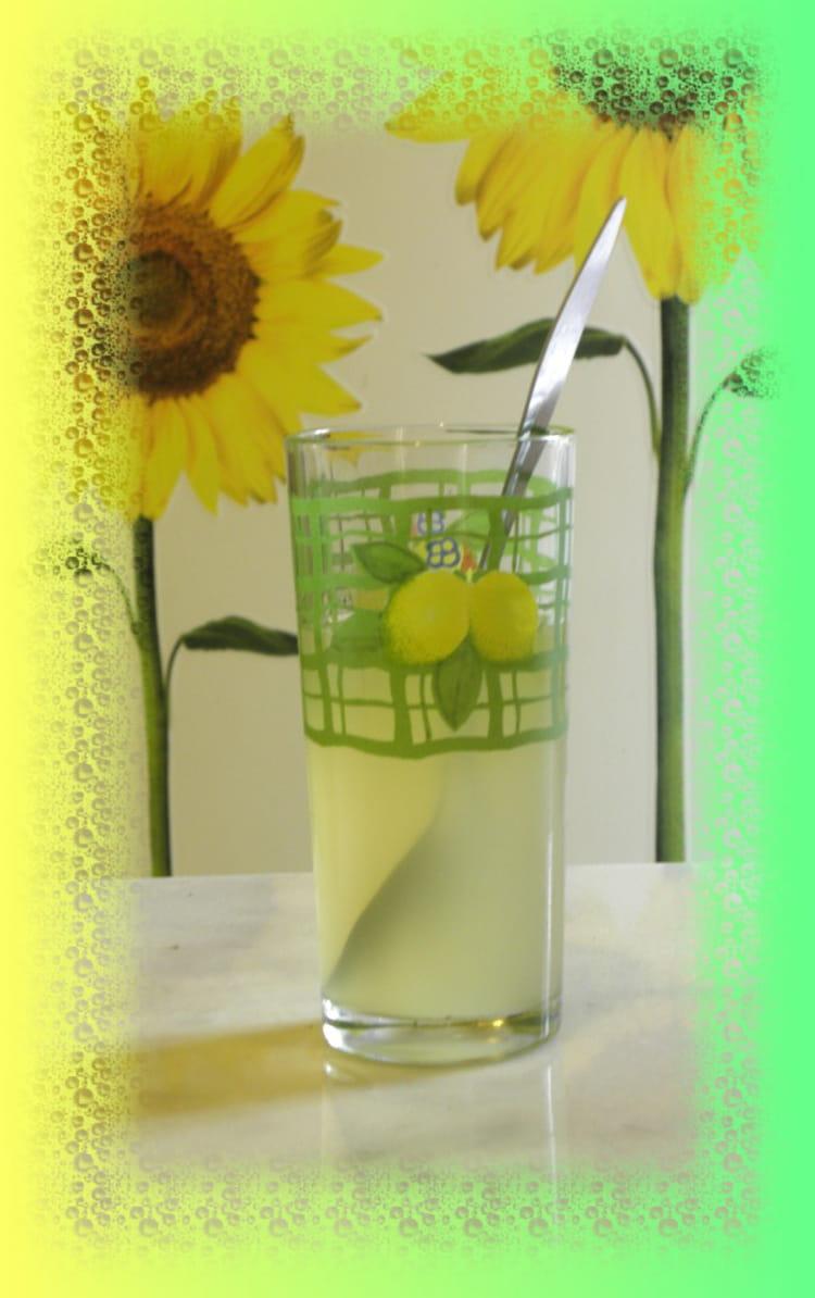 recette de boisson rafraichissante au citron la recette facile. Black Bedroom Furniture Sets. Home Design Ideas