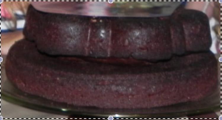 Recette de g teau au chocolat moelleux sans beurre ni huile la recette facile - Gateau chocolat avec huile sans beurre ...