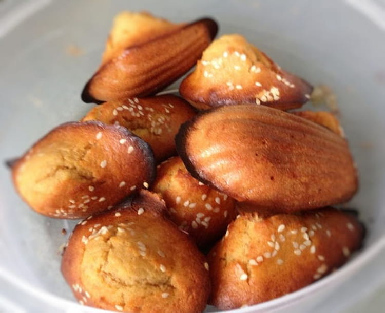 madeleines salees faciles et rapides